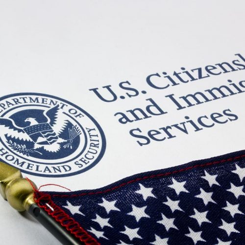 carrot-services-immigration-700-5